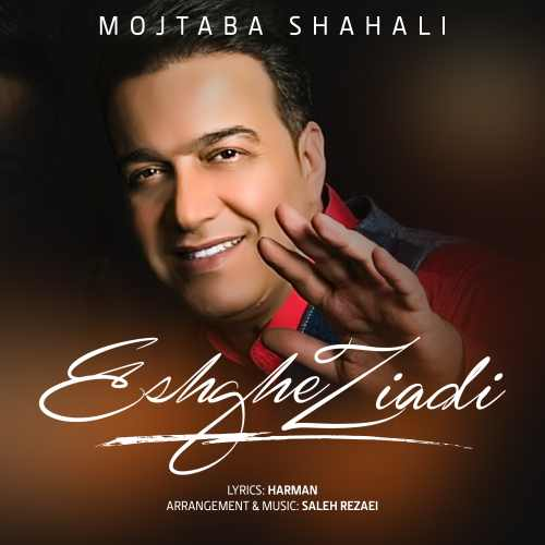 دانلود موزیک جدید مجتبی شاه علی عشق زیادی