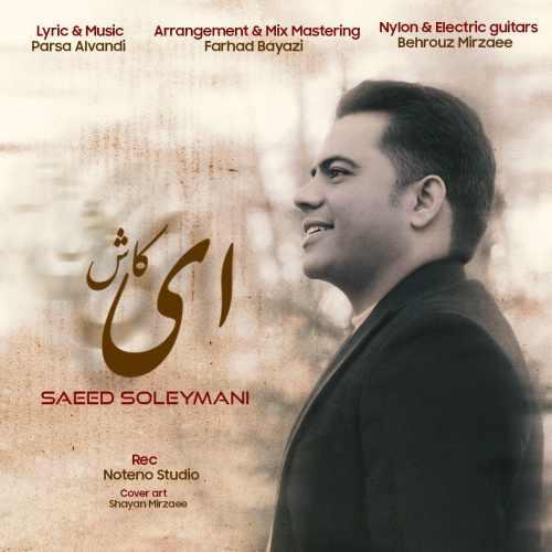 دانلود موزیک جدید سعید سلیمانی ای کاش