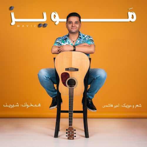 دانلود موزیک جدید امیر هاشمی مویز