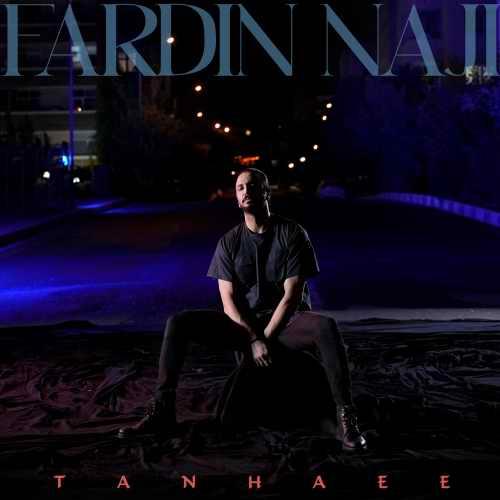 دانلود موزیک جدید فردین ناجی تنهایی
